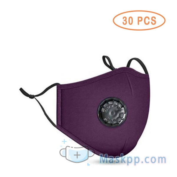 30 Pcs Face Mask Washable Reusable Anti-fog PM2.5 Mask With Breathing Valve - Purple